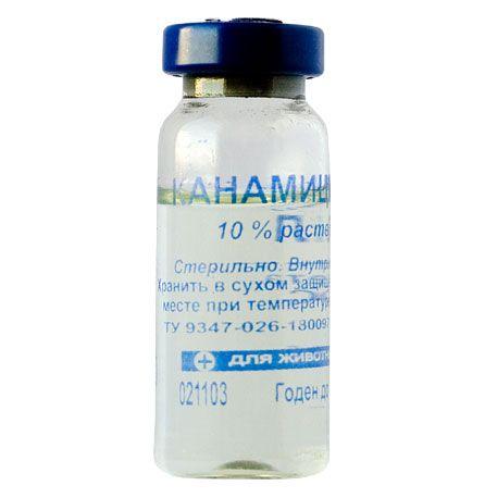 ветеринарный препарат Канамицин 10%