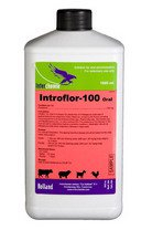 Introflor-100 Oral
